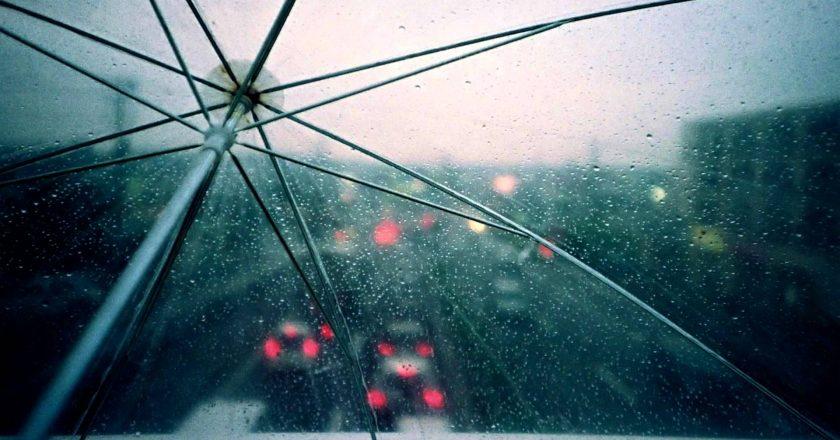 Image of traffic through an umbrella