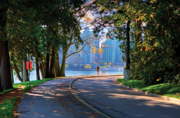 10 Fun Activities When You're Riding SOLO in Vancouver ...
